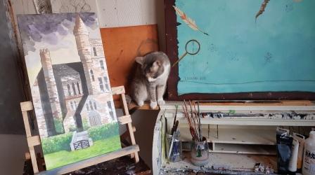 Våran nyfikna katt Hedda som ofrivilligt fått stå modell flera gånger :-)